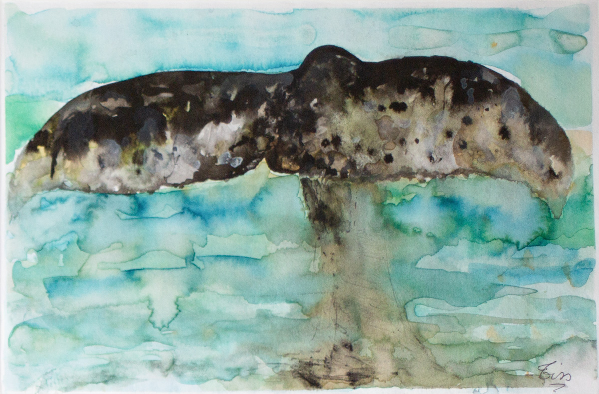 Queue de baleine - 2 - Encre